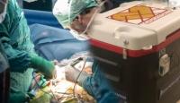 Türkiye'de 26 bin 667 hasta organ nakli bekliyor