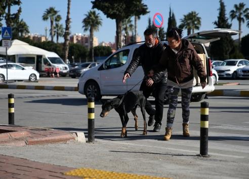 """Bakan Pakdemirlinin sahip çıktığı köpek """"Bobo"""" tedavisi için İstanbula gönderildi"""