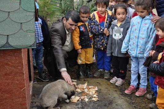 Minik öğrenciler, Pamuka okul bahçesinde bakıyor