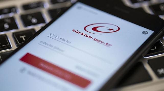 e-Devlet kullananların sayısı 45 milyonu geçti