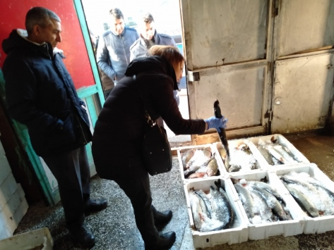 Altındağda balık depoları denetlendi