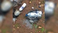 Şanlıurfa'da boş arazide bulunan patlayıcı imha edildi