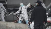 Çin'deki virüs insanlardan yayılıyor: Endişelenmeli miyiz?
