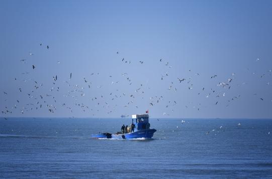 Mersinde denizde kaybolan bekçiyi arama çalışmaları sürüyor