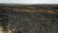Türk ormancılardan Avustralya'daki yangınların söndürülmesine katkı