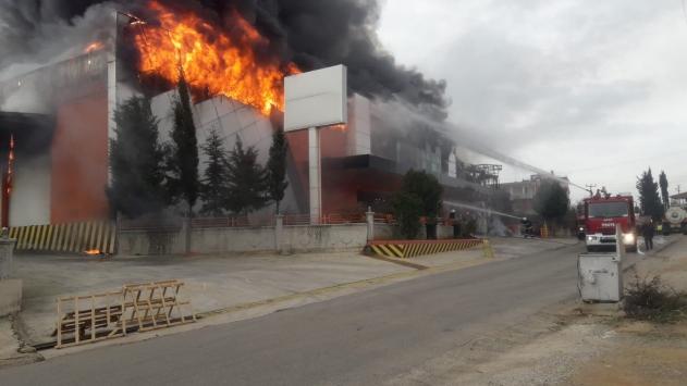 Antalyada narenciye işleme tesisinde yangın