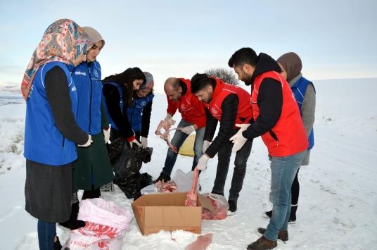 Muşta gönüllü gençler, yaban hayvanları için doğaya yem bıraktı