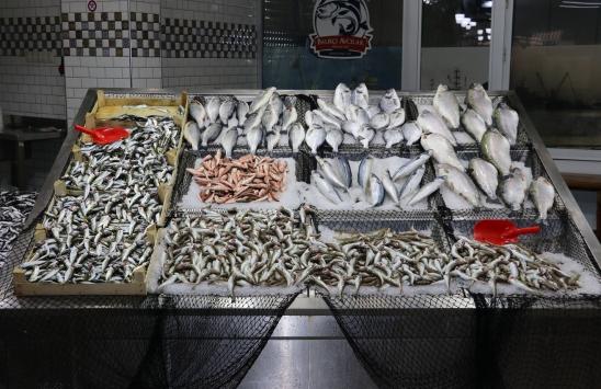 Batı Karadenizde balıkçılar bu sezon umduğunu bulamadı