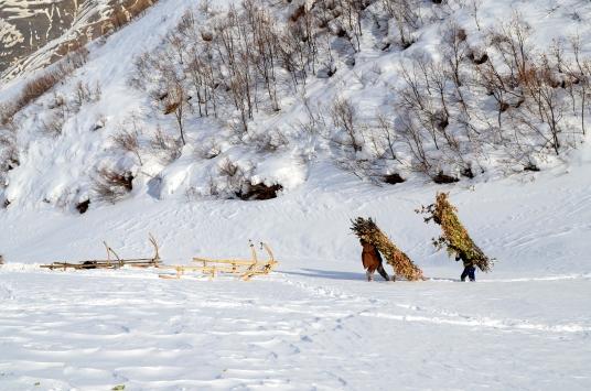 Van ve Bitliste soğuk hava etkisini sürdürüyor