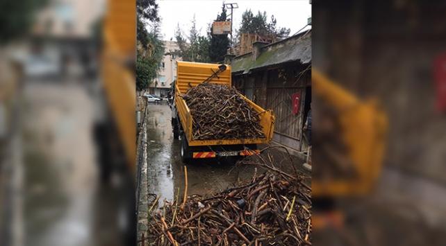 Mersinde selin sahile süreklediği 6 kamyon odun parçası yoksullara dağıtılacak