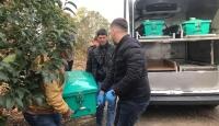 Manisa'da mevsimlik işçi fidanlıktaki binada ölü bulundu