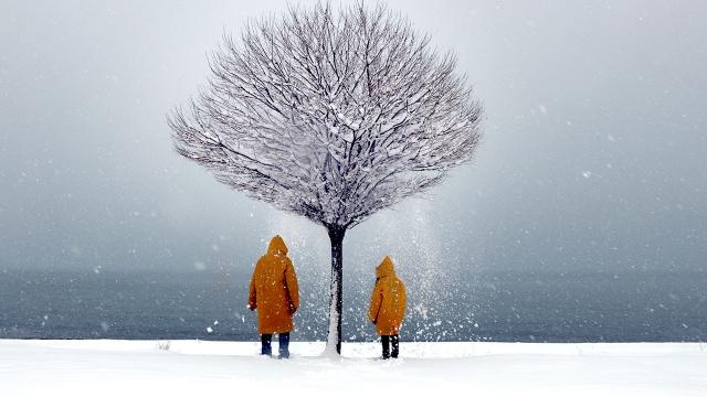 Erciş'te kartpostallık kış manzaraları