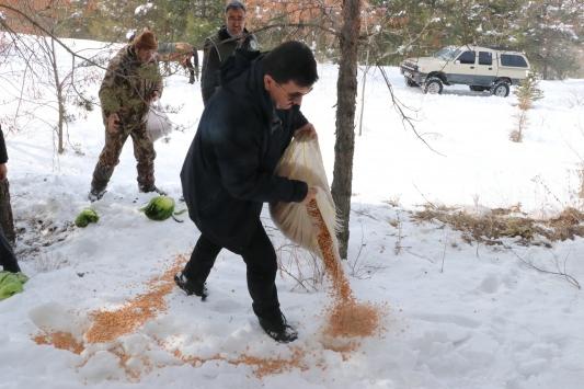 Erzincanda yaban hayvanları için doğaya yem bırakıldı