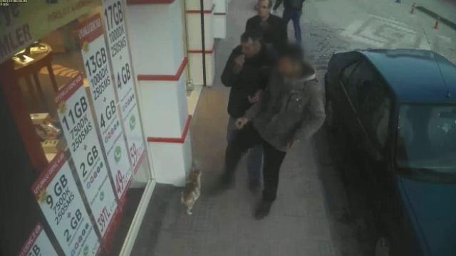 Kediye tekme atan kişiye idari para cezası