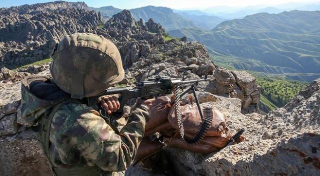 PKKlı 2 terörist daha teslim oldu