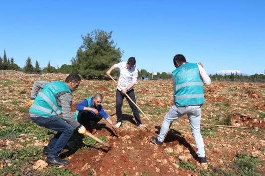 """Antalyada hükümlüler """"Adalet Ormanı""""na fidan dikti"""