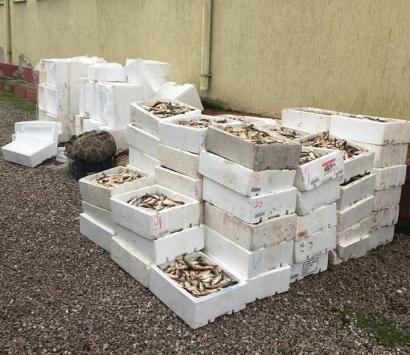 Kaçak avlanan balıkçılara ceza kesildi