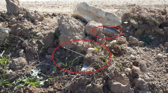 Rasulaynda teröristlerce tuzaklanmış patlayıcı imha edildi