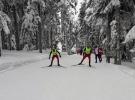 Kayaklı Koşu Milli Takımı'ndan 5 madalya