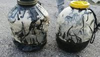 Yasa dışı sülük avına 73 bin lira ceza
