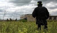 Meksika'da bir çiftlikte 16 ceset bulundu