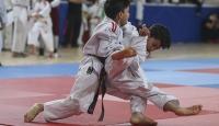 Diyarbakır'da 21 bin çocuk judo öğrenecek