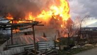 Samanlık yandı, ahırda bulunan hayvanları vatandaş kurtardı