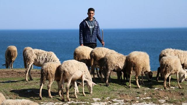 Çoban Veysel'in sörf sevgisi