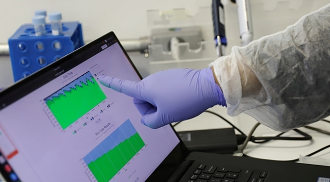Polonya kabinesine koronavirüs testi