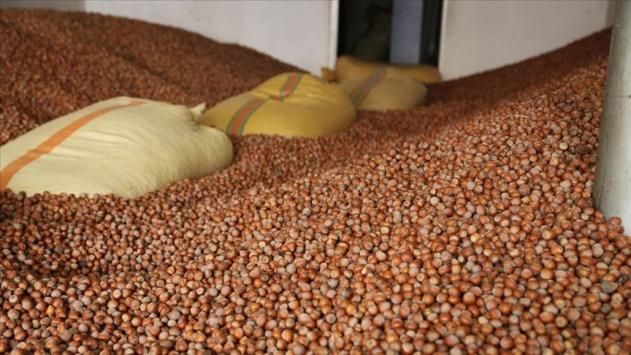 KFMİB Başkanı Sevinçten TMOnun depolarındaki fındığın satılması isteği