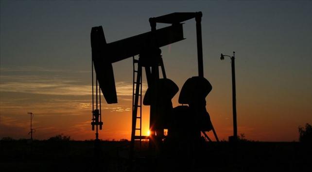 Brent petrolün varil fiyatı 25 doların altına indi