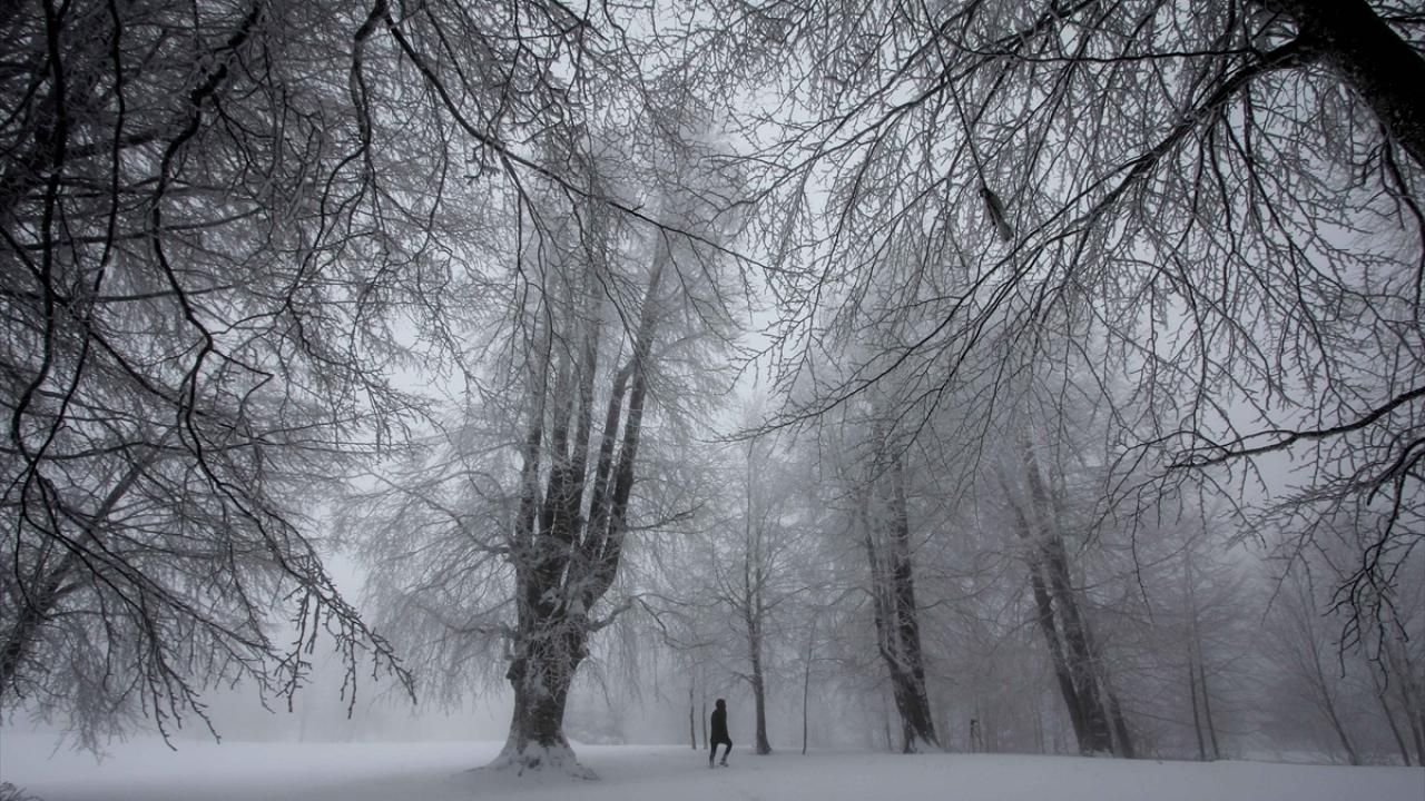 Domaniç Dağlarında yağan kar kartpostallık görüntüler oluşturdu