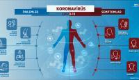 Koronavirüs belirtileri nelerdir?