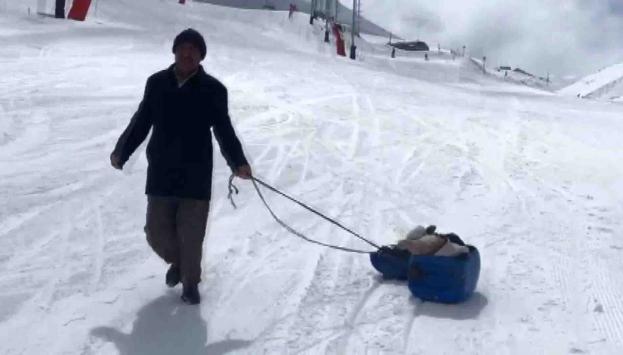 Hasta buzağıyı kızakla veterinere götürdü
