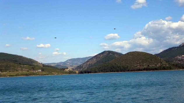 Kozan Barajı Gölüne 200 çift martı bırakıldı