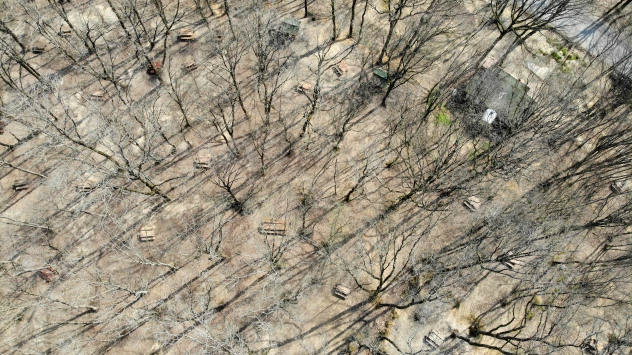 Piknikçiler uyarılara uydu, Belgrad Ormanı boş kaldı