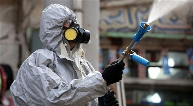 Hantavirüs nedir? Çindeki yeni virüs…