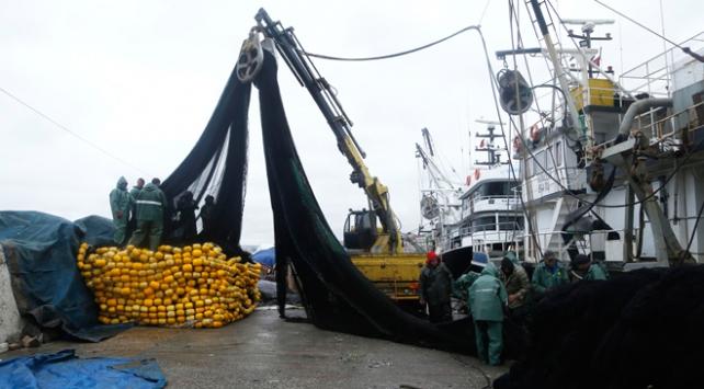 Balıkçılar sezonu erken kapattı