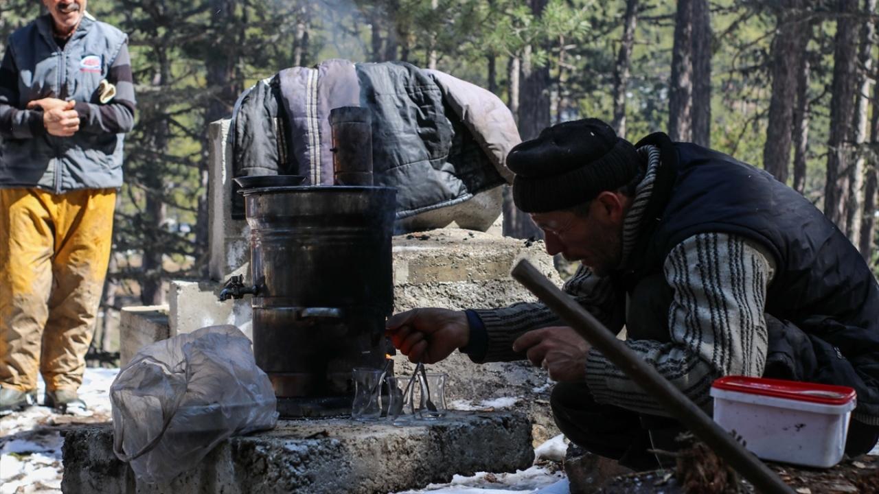 Karla kaplı Domaniç Dağlarında mobilya fabrikaları için kesim yapıyorlar