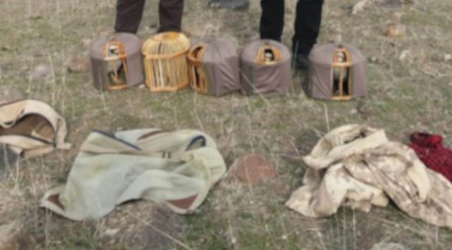 Iğdırda kaçak keklik avına 64 bin lira ceza