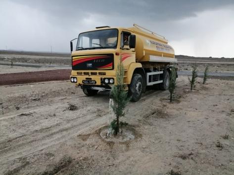 Karapınar Belediyesi yeni diklilen fidanları suluyor