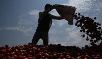 """""""Mevsimlik tarım işçisi göçü"""" koronavirüs endişesiyle başladı"""