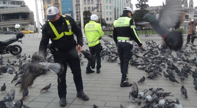 Taksimde aç kalan güvercinleri trafik polisleri besledi