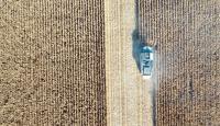 Tarım Kredi, sözleşmeli üretimde hedef büyüttü