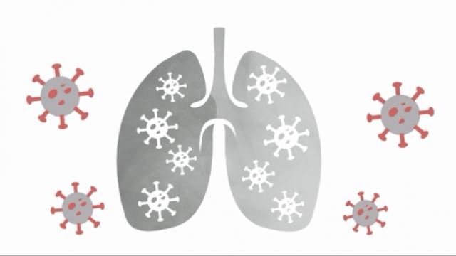 Yeşilay'dan sigarayı bırakma çağrısı: Koronavirüs sigarayı sever