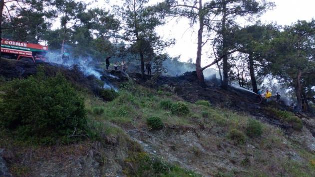 Muğlada 2 dönüm orman ve 25 dönüm sazlık alan yandı