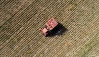 21 ilde çiftçiye tohumun yüzde 75'i hibe edilecek