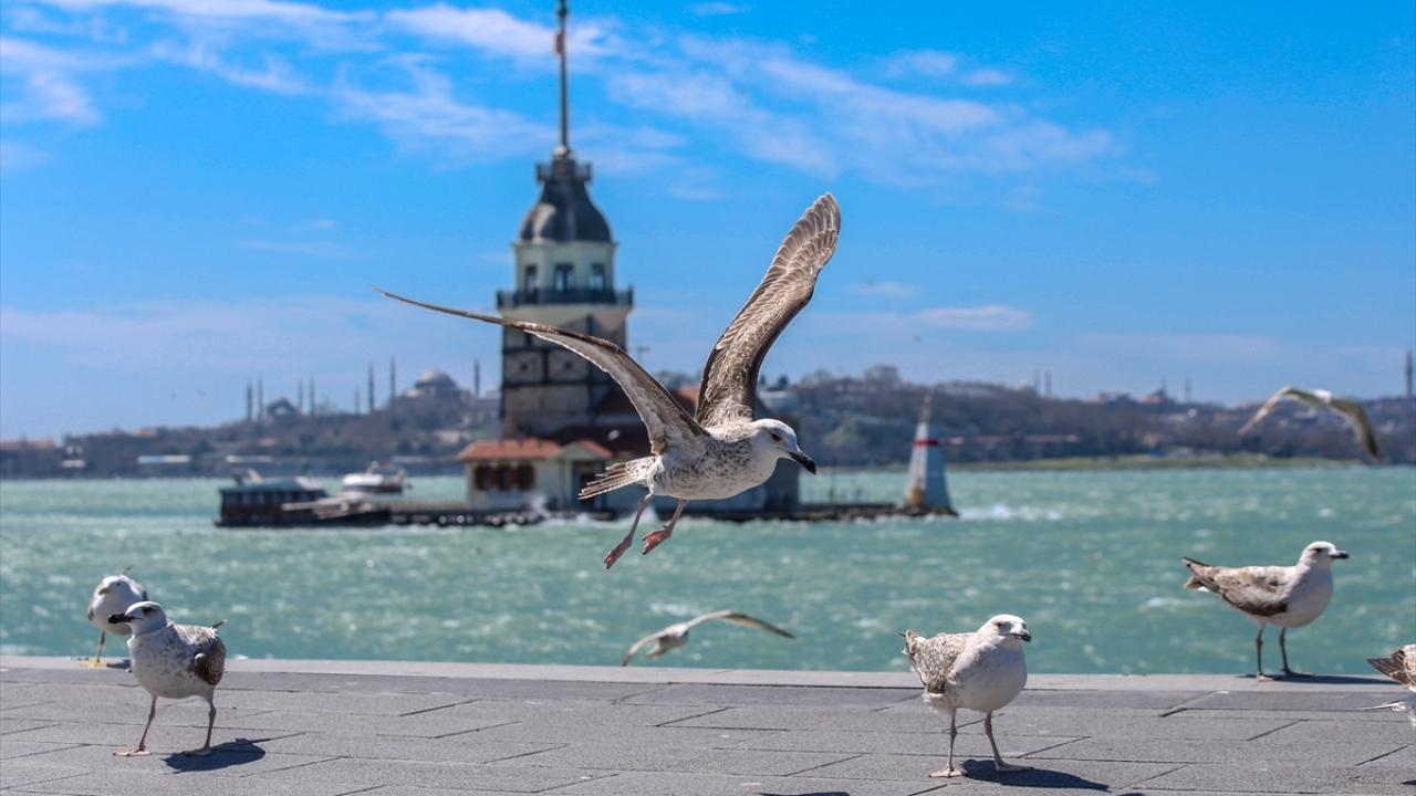 İstanbul sahilleri sessiz