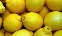 Limonun ihracatı ön izne bağlandı