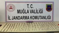 Muğla'da 290 parça sikke ele geçirildi